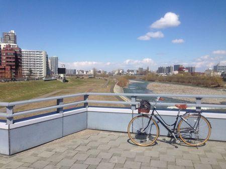 IMG_1353 ブリヂストン カジュナ 豊平川.jpg